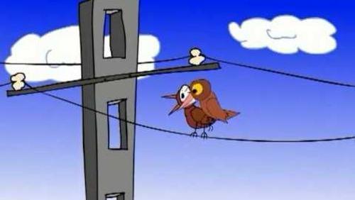 Ptaszki (odc. 11) Tylko Dla Dorosłych