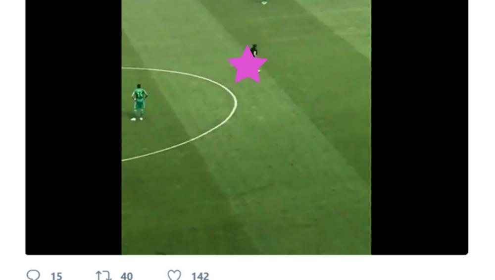 Golas na polskim meczu! Fan Śląska Wrocław pokazał TO Lechowi Poznań [VIDEO]