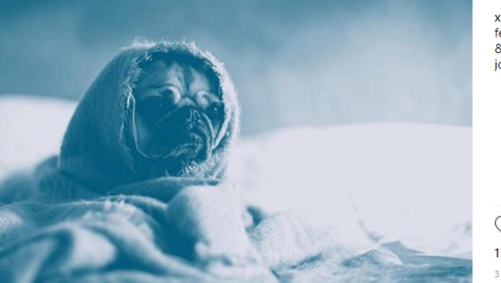 Blue Monday – dlaczego dziś? 4 najsmutniejsze hity na depresję