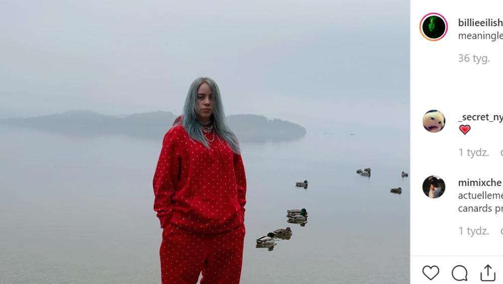 Billie Eilish: nowa piosenka EVERYTHING I WANTED już jest! Opowiada o kimś ważnym