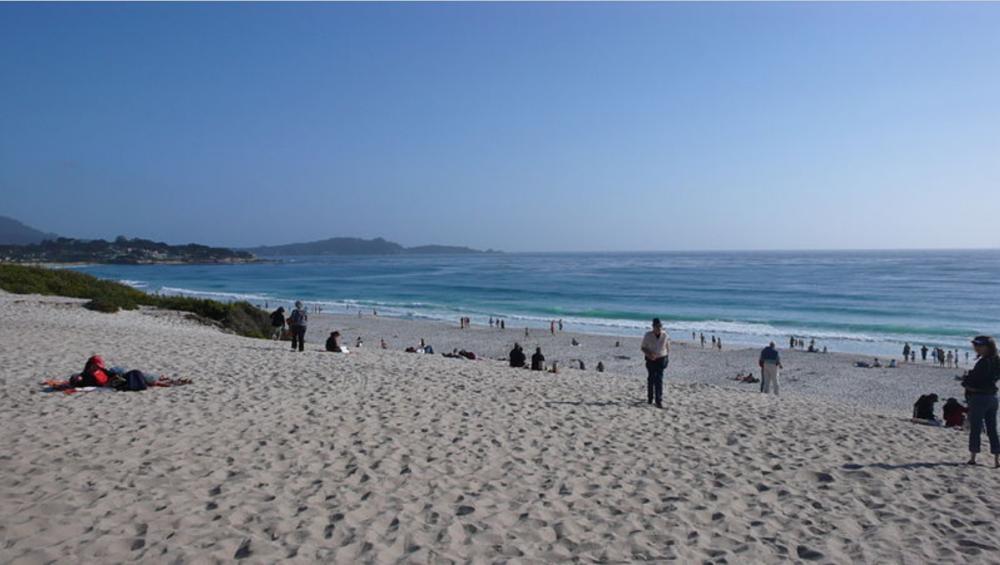 Kokaina na plaży. Zebrano już setki woreczków, wypływają kolejne