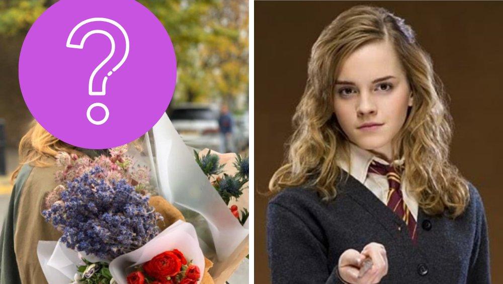 Jak dzisiaj wygląda i co robi Hermiona z Harry'ego Pottera?