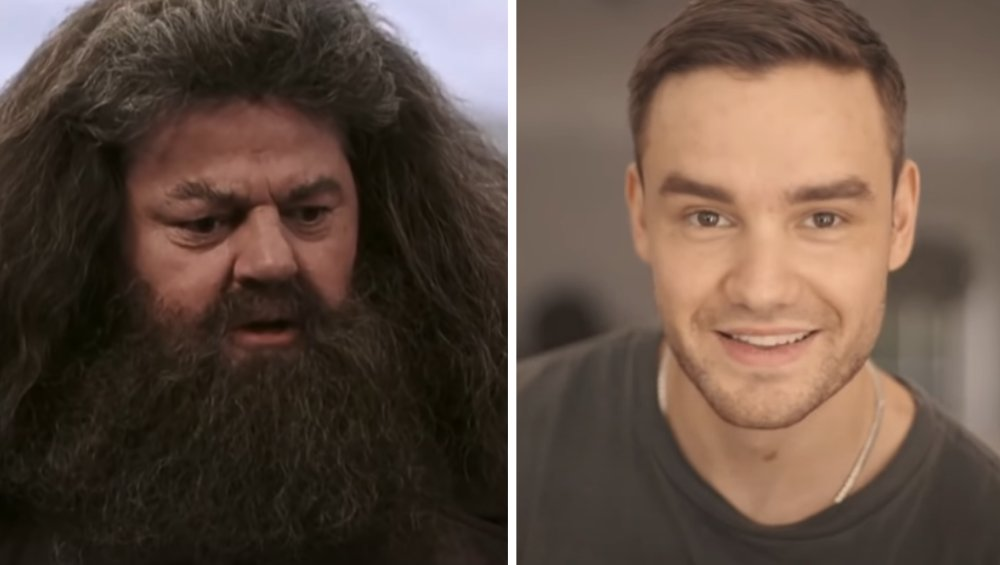 Liam Payne zbudował… chatę Hagrida! Ma ją w swoim ogrodzie