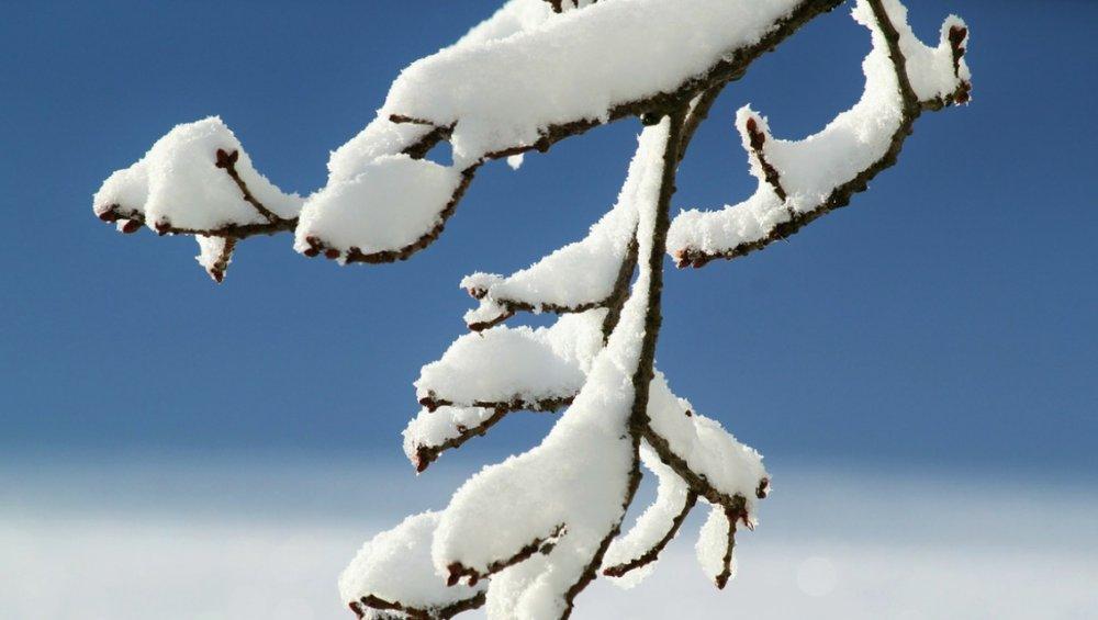 Pogoda: zima nadejdzie już w ten weekend?