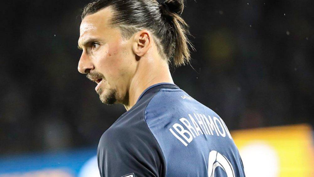 Zlatan Ibrahimović zabił lwa i zabrał jego szczątki? Szokujące doniesienia o piłkarzu