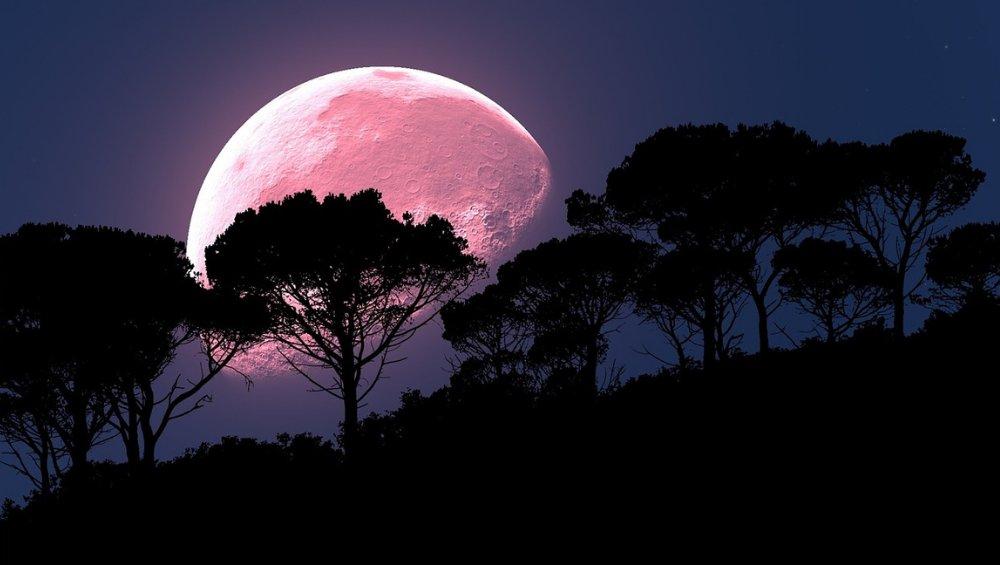 Pełnia Księżyca – kwiecień 2021. Kiedy pojawi się Różowy Księżyc?